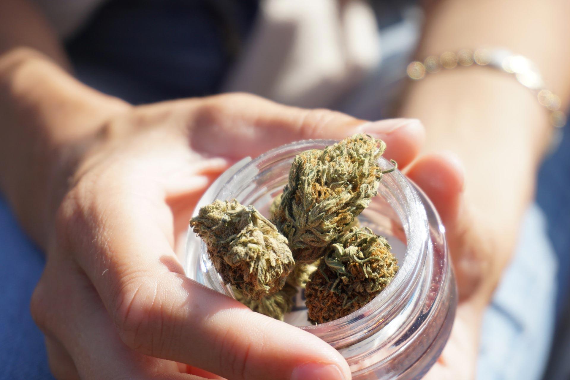 bocal de têtes de cannabis