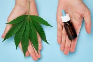 deux mains ouvertes tenant une feuille de cannabis et un flacon d'huile CBD
